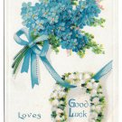 Good Luck Loves Token Postcard Horseshoe Bouquet Forget me nots Embossed