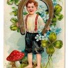 Birthday Boy Horseshoe Good Luck herzliche glückwünsche geburtstag Embossed Gilt Postcard