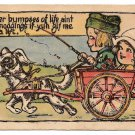 Dutch Boy Driving Girl in Dog Cart Der Bumpses of Life Vintage Dutch Kids Postcard