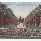 CA Los Angeles Lincoln Park Winter Scene Flower Bed Pansies Vintage Postcard Van Ornum