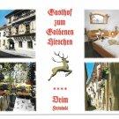 Germany Hotel Diem Freistadt Gasthof Golden Stag Goldenen Hirschen Multiview Postcard 4X6