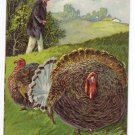 Thanksgiving Turkey Man in High Top Hat Embossed Printed in Germany 1908 Postcard