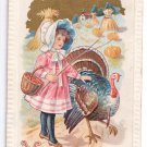 Thanksgiving Girl Turkey Pumpkin Field J Herman Vintage 1911 Postcard Embossed