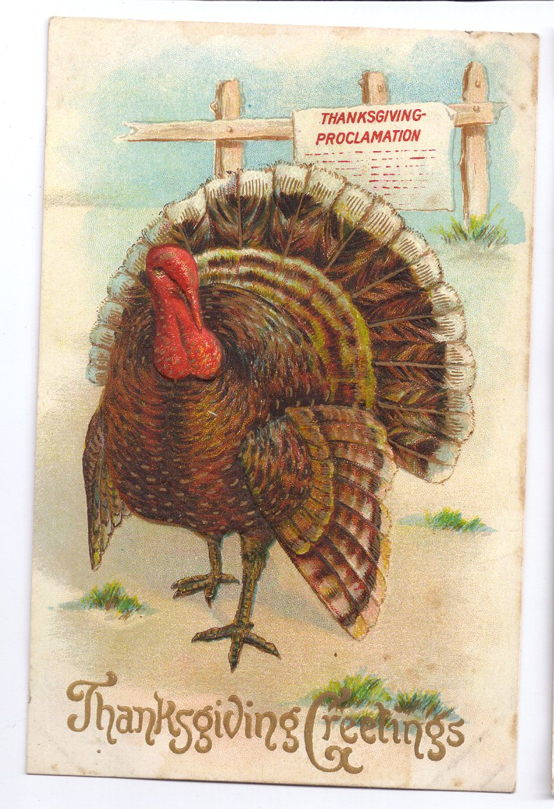 Thanksgiving Proclamation Turkey Embossed Gold Gilded Lettering Vintage Postcard