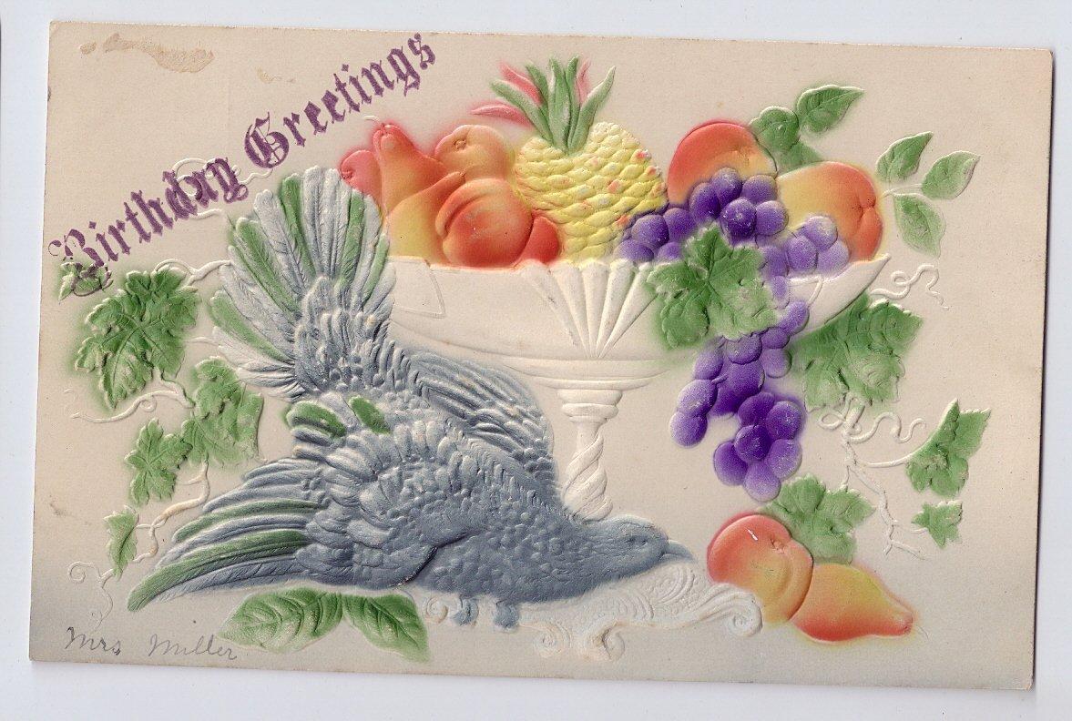 Birthday Greetings Dove Fruit Bowl Embossed Vintage Airbrushed Postcard