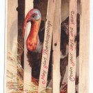 Signed Clapsaddle Turkey in Crate Thanksgiving Greetings Vintage IAP Postcard 1912