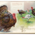 Vintage Thanksgiving Postcard Turkeys Proclamation Embossed Tuck Series 123