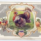 Patriotic Turkey Stars and Stripes Shield Vintage Embossed Thanksgiving Postcard Winsch back