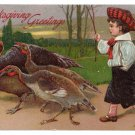 Girl Feeding Turkey Corn Artist Signed Clapsaddle Vintage Embossed Thanksgiving Postcard 1909