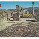 Morocco Maroc Volubilis Roman Mosaics Ruins Vtg 4X6 Postcard
