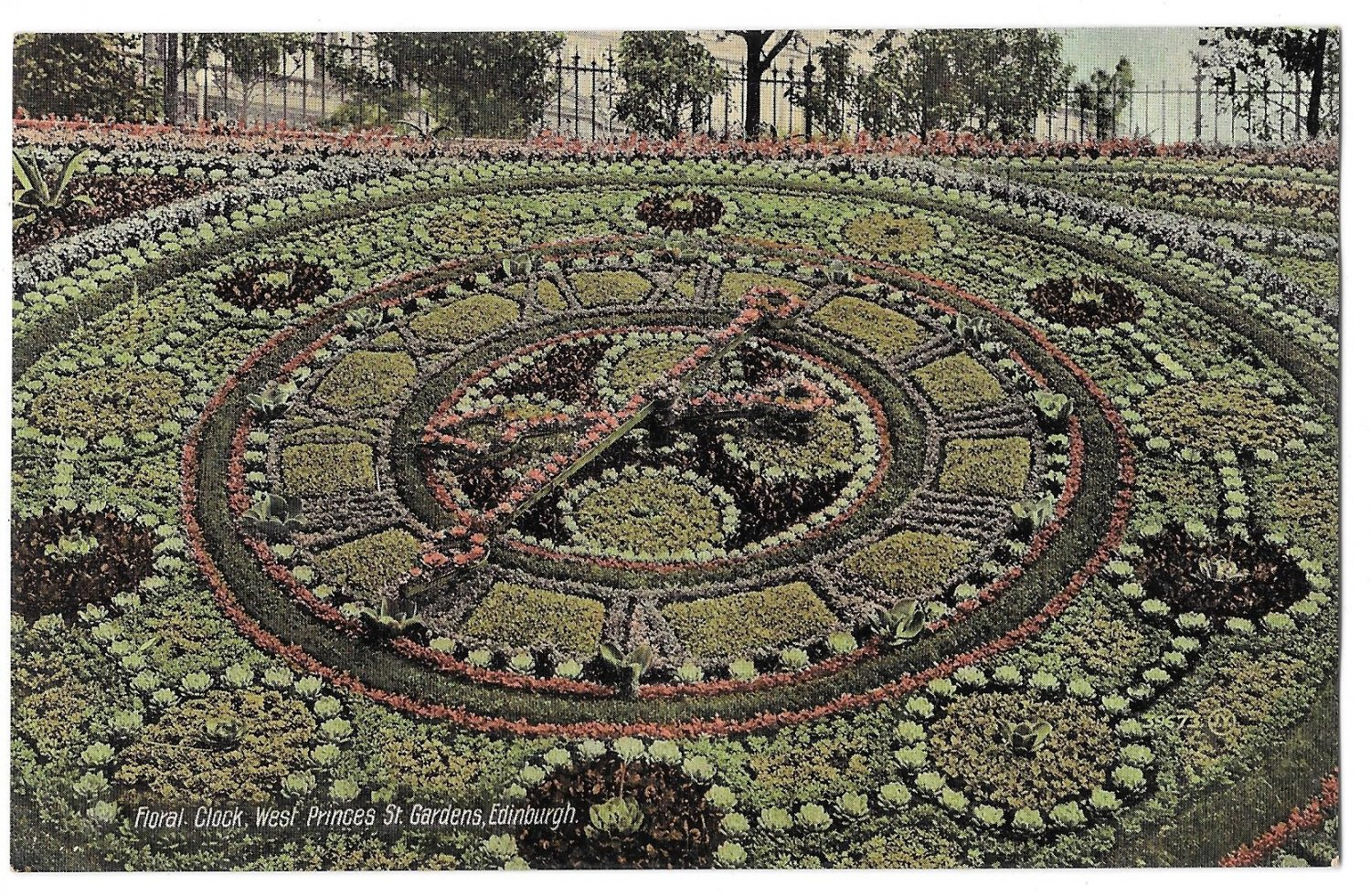 Edinburgh Scotland Floral Clock West Princes St Gardens Vntg Valentines Postcard