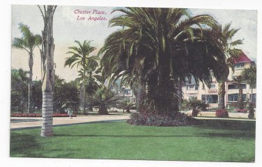 CA Los Angeles Chester Place Palm Tree Mansion Vntg Van Ornum Postcard
