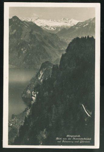 Switzerland Burgenstock View from Hammetschwand auf Felsenweg Alps Vintage RP Postcard