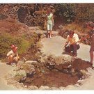 Hot Springs AR National Park Arkansas Thermal Water Display Family Vintage Postcard