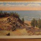 Vintage Sand Dune On The Shore Of Lake Michigan Holland MI Postcard