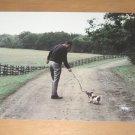 Vintage President Ronald Regan Walking His Dog Postcard