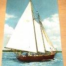 Vintage Yachting On The Great Kentucky Lake Sailboat Postcard