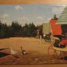 Vintage Santa's Village Jefferson New Hampshire Postcard