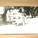 Vintage Dog In Front Of House Photo Postcard