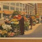 Vintage Street Flower Vendor San Francisco Postcard