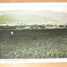 Vintage Alfalfa Fields Near Gonzales California Postcard