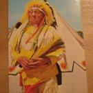 Vintage Native American Indian In Full Dress Postcard