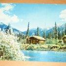 Vintage Trappers Cabin Alaska Postcard