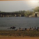 Vintage Monterey Bridge & Big Rock Cave Janesville Wisconsin Postcard