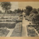 Vintage General View Of Flower Gardens Mount Vernon Virginia Postcard