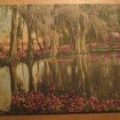Vintage Magnolia Gardens Charleston South Carolina Postcard