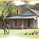 Vintage Jack Daniels Old Office Lynchburg Tennessee Postcard