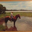 Vintage Horseback Riding Lake Jackson Sebring FL Postcard