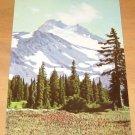 Vintage Mt Jefferson In Oregon Postcard