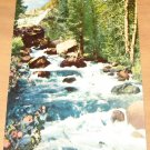 Vintage Bishop Creek Inyo National Forest Postcard