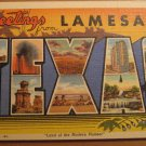 Vintage Greetings From La Mesa Texas Postcard