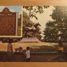 Vintage Man O War The Wonder Horse Kentucky Postcard