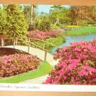 Vintage Florida's Cypress Gardens Postcard
