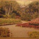 Vintage James Gardens Toronto Ontario Canada Postcard