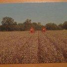 Vintage King Cotton Mechanical Pickers Postcard
