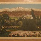 Vintage California Garden Scene In Winter Showing Sierra Madre Range Postcard