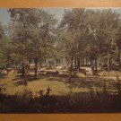 Vintage Lake Waramaug State Park New Preston CT Postcard