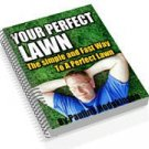 How to Create Your Perfect Lawn