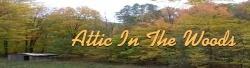 atticinthewoods