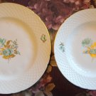 Danish Bing & Grondahl 2 plates Green Flower Gold Leaves