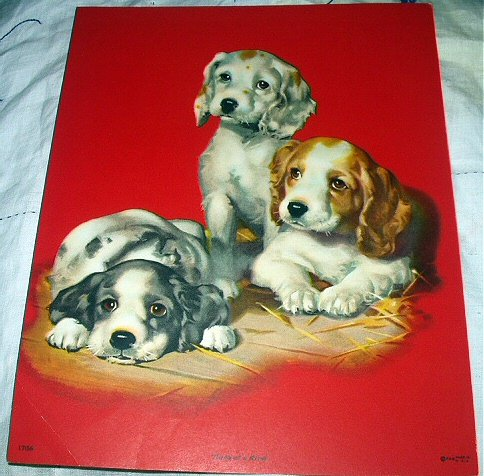 THREE SWEET PUPPY DOGS-VINTAGE LITHOGRAPH PRINT