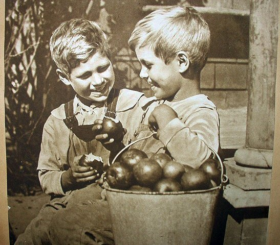 1917 APPLES RED AND YELLOW-Two Boys Eating Apples
