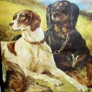 ON WATCH-Two Hunting Dogs Guarding Their Bird Catches