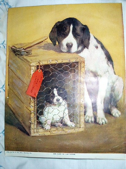 THE LAST OF THE LITTER-Cute Vintage Print-Mother Dog,Baby Puppy in Box