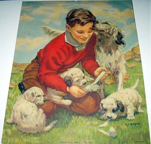 A GRATEFUL PAL-E.B.SEGNER-Sweet Boy Bandaging Puppy Springer Spaniel Lithograph