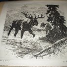 R.H. PALENSKE-Huge Bull Moose and His Mate-Vintage Drypoint Print